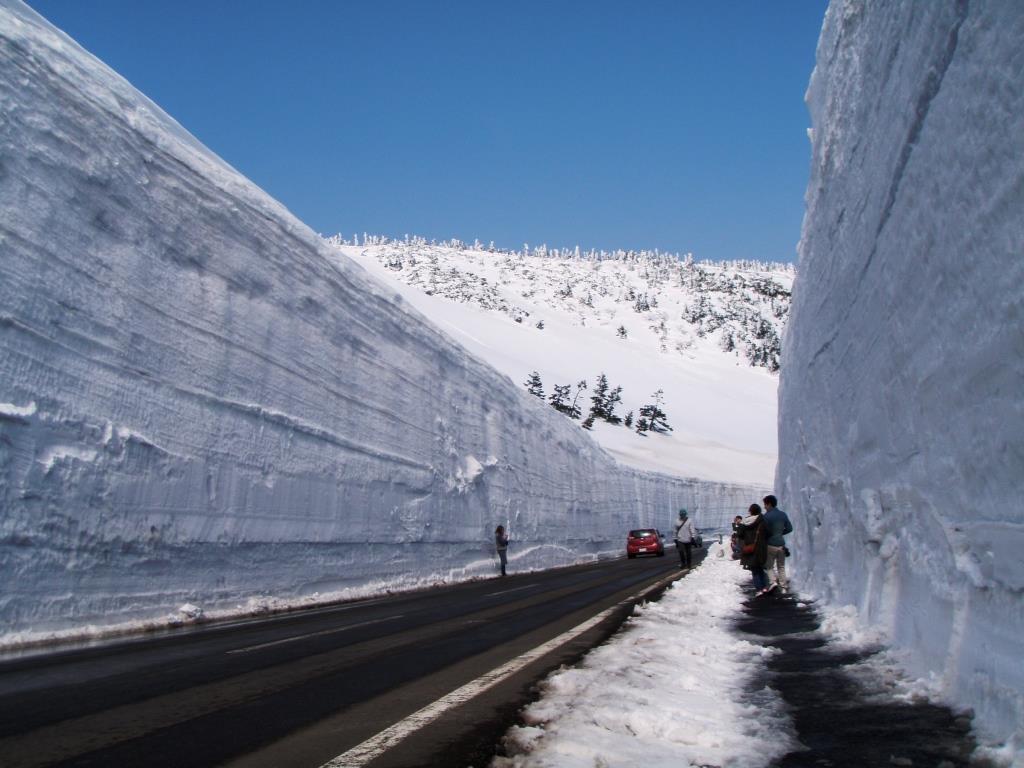 「八幡平雪牆」的圖片搜尋結果