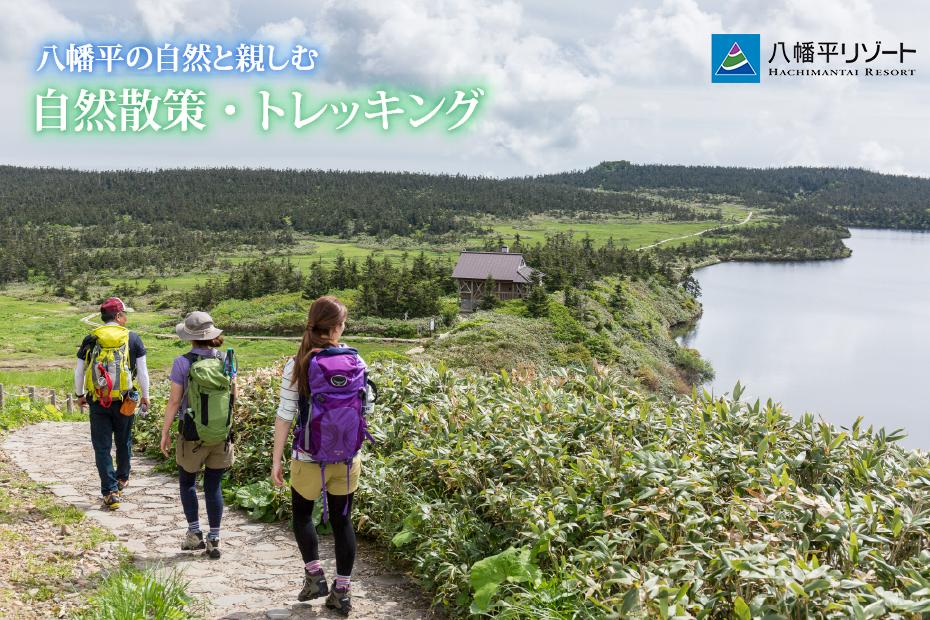 banner_trekking