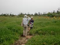 八幡平の新緑を満喫♪             新幹線利用首都圏からの滞在ツアー
