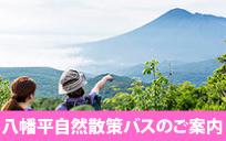 八幡平自然散策バス【夏号】のご案内