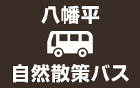 【八幡平頂上へ行くなら♪】八幡平自然散策バスのご案内