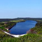 初夏の八幡沼
